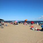 Web_Beach_Orchard_02